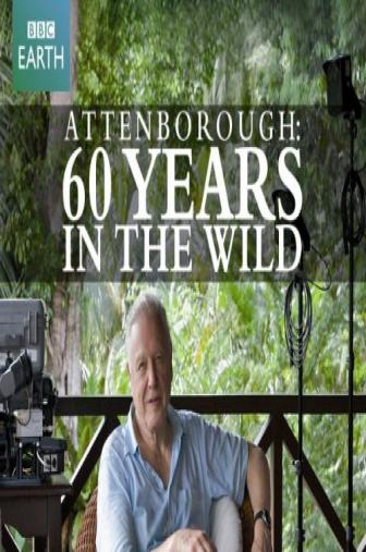 Random Movie Pick - Attenborough: 60 Years in the Wild 2012 Poster