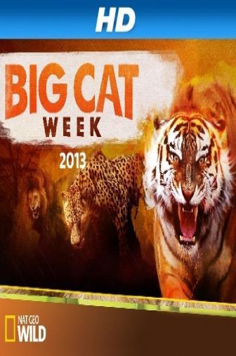 Random Movie Pick - Big Cat Week 2013 Poster