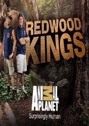 Random Movie Pick - Redwood Kings 2013 Poster