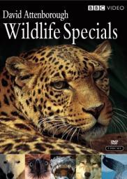 Random Movie Pick - Wildlife Specials 1995 Poster