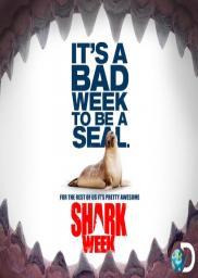 Random Movie Pick - Shark Week 1987 Poster