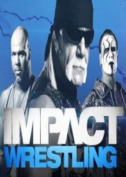 Random Movie Pick - TNA Impact! Wrestling 2004 Poster