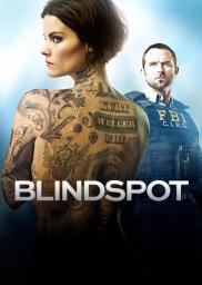 Random Movie Pick - Blindspot 2015 Poster