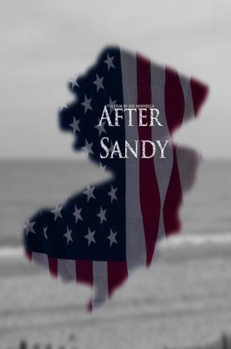 Random Movie Pick - After Sandy 2015 Poster